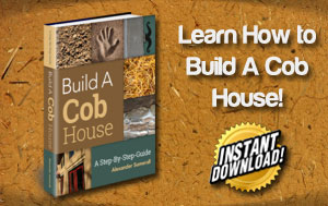 Earth building techniques build your home with earth this cob build a cob house a step by step guide fandeluxe Choice Image